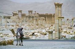 Ruïnes van oude stad Palmyra Royalty-vrije Stock Afbeeldingen