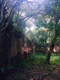 Ruïnes van Paricatuba, centrale zaal stock foto's