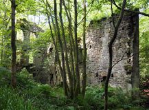 Ruïnes van staupsmolen in clough van het allegaartjegat in bos Royalty-vrije Stock Afbeelding