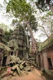 Ruïnes van Ta Prohm, Angkor Wat, Kambodja stock fotografie