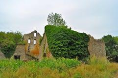 Ruïnes van vernietigd bemost dorp stock fotografie