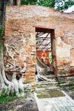 Ruïnetempel in Wat Khun Inthapramun van Angthong-Provincie Thailand Royalty-vrije Stock Fotografie