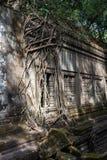 Ru?nas do templo antigo de Beng Mealea sobre a selva, Cambodia fotografia de stock royalty free