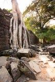 Ru?nes van de 12de Eeuw van Preah Khan Temple in Angkor Wat Siem Reap, Kambodja royalty-vrije stock afbeeldingen