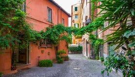 Rua acolhedor com as plantas em Trastevere, Roma, Europa imagem de stock royalty free