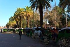 Rua alinhada com os carros do cavalo com excitadores Fotos de Stock