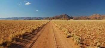 Rua através do deserto Foto de Stock