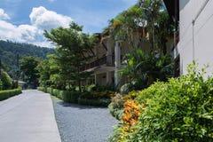 A rua bonita com as plantas tropicais no dia ensolarado tailândia fotos de stock