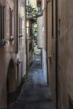 Rua bonita da aleia no lago Imagens de Stock Royalty Free