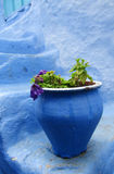 Rua com os potenciômetros de flor azuis coloridos, Marrocos de Chefchaouen Imagem de Stock