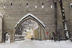 Rua da cidade de Tallinn Fotos de Stock Royalty Free