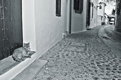 Rua da cidade velha da cidade de Ibiza, Balearic Island, Spain Imagem de Stock