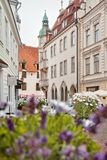 Rua da cidade velha de Tallinn em Estônia Foto de Stock