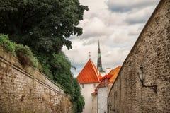 Rua da cidade velha de Tallinn em Estônia Fotos de Stock