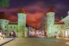 Rua da noite na cidade velha de Tallinn, Estônia Foto de Stock Royalty Free