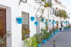 Rua das flores e dos potenciômetros da planta, Imagens de Stock Royalty Free
