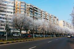 Rua de Bucareste, Romênia Foto de Stock Royalty Free