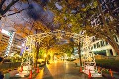 Rua de Midosuji com iluminação da luz da noite fotografia de stock