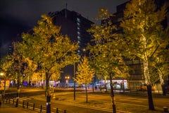 Rua de Midosuji com iluminação da luz da noite foto de stock