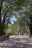 Rua do centro da plaza imagem de stock royalty free