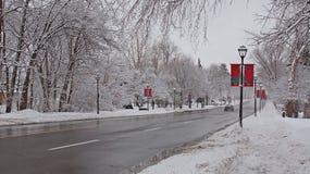 Rua do inverno Fotografia de Stock Royalty Free