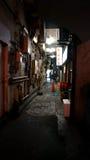 Rua do Tóquio Imagem de Stock Royalty Free