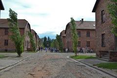 Rua em Auschwitz Imagem de Stock