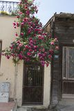 Rua em Heybeliada, Istambul, Turquia Vazio, turístico imagens de stock royalty free