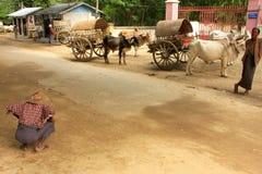 Rua em Mingun com os carros dos povos e do boi, Myanmar Fotografia de Stock Royalty Free