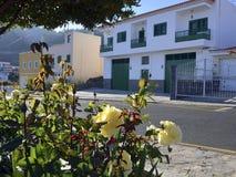 Rua em Vilaflor, Tenerife, Ilhas Canárias fotografia de stock royalty free