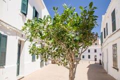 Rua espanhola em Fornells, Menorca Fotografia de Stock