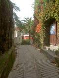 Rua estreita com parede coberto de vegetação Fotos de Stock