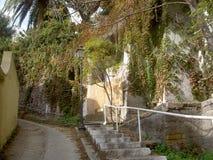 Rua estreita com a parede de florescência coberto de vegetação Imagem de Stock Royalty Free