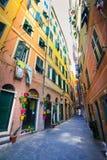 Rua estreita decorada com os potenciômetros de flor coloridos em Camogli Foto de Stock Royalty Free