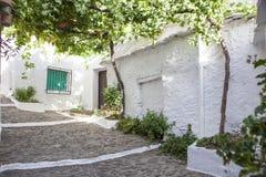 Rua inclinada do coberto pelo mandril da videira, Alpujarras, Espanha imagens de stock royalty free