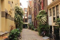 Rua minúscula Foto de Stock