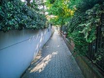 rua 23-Narrow Fotografia de Stock