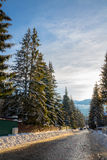 Rua no inverno Imagem de Stock