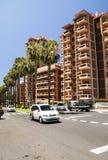 rua Palma-alinhada em Puerto de la Cruz Fotos de Stock Royalty Free