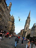 Rua principal na cidade de glasgow, scotland Fotos de Stock