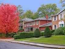 Rua residencial alinhada árvore imagens de stock