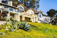 Rua residencial, Santa Cruz, Califórnia fotografia de stock