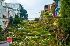 Rua San Francisco do Lombard Fotografia de Stock Royalty Free