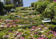 Rua San Francisco do Lombard Fotografia de Stock