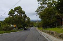Rua suburbana Fotos de Stock Royalty Free