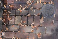 Rua velha suja do tijolo com folhas e Rusty Steel Water Cover fotos de stock
