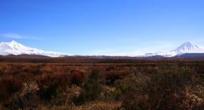 Ruapehu e Ngaurahoe Imagem de Stock Royalty Free