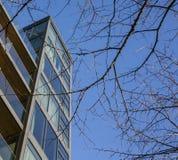 Ruas em Londres, no dia ensolarado, em céus azuis e em alguns ramos Fotos de Stock Royalty Free
