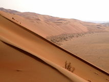 Rub Al Khali 17 Royalty Free Stock Photos