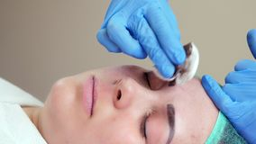 Rub your eyebrows with a cotton pad with an antiseptic